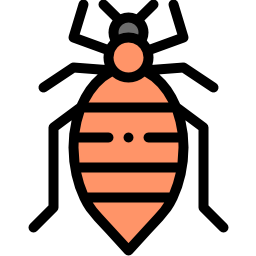 20 Most Effective Home Remedies For Bed Bugs | Pain Relief